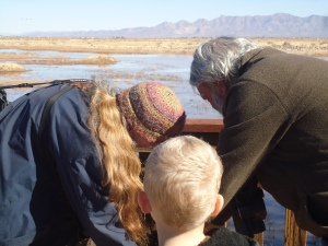 Each day, dozens of people come to visit the cranes, ducks, geese, falcons, hawks, and doves that frequent the Whitewater Draw Wildlife Area.  Here, Sheri and Tom adjust their scope for this young birdwatcher.
